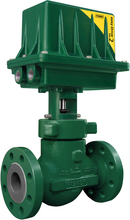 Fisher D4 Control Valve